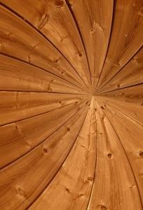 Spiraal hout met centrum -uitsnede