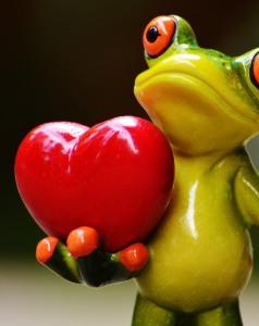 kikker-met-hart