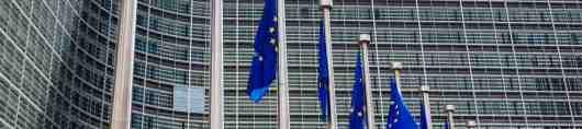 ECB -uitsnede.jpg