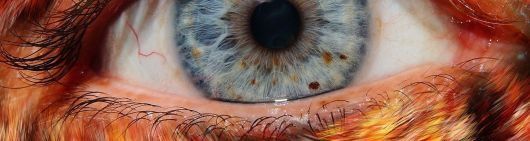 Bont oog -uitsnede
